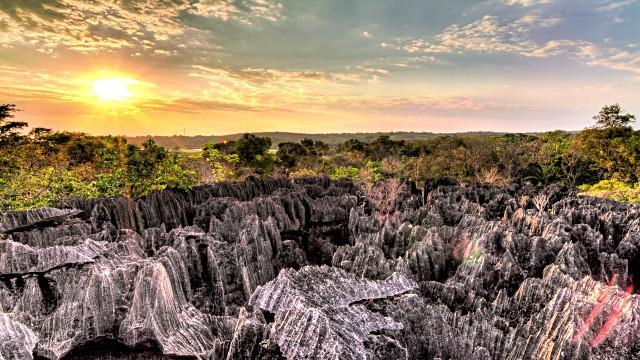Asal Usul Madagaskar Yang Patut Anda Ketahui